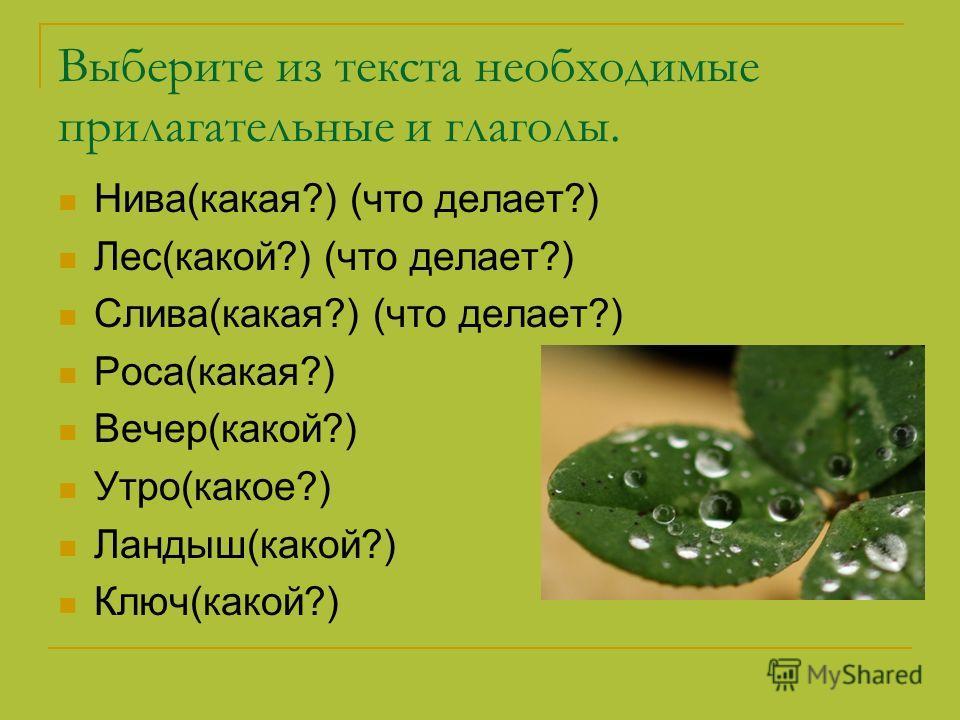 Выберите из текста необходимые прилагательные и глаголы. Нива(какая?) (что делает?) Лес(какой?) (что делает?) Слива(какая?) (что делает?) Роса(какая?) Вечер(какой?) Утро(какое?) Ландыш(какой?) Ключ(какой?)