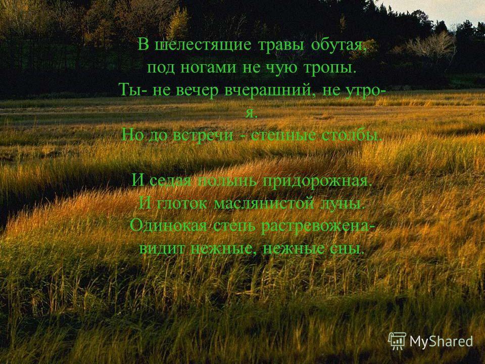 В шелестящие травы обутая, под ногами не чую тропы. Ты- не вечер вчерашний, не утро- я. Но до встречи - степные столбы. И седая полынь придорожная. И глоток маслянистой луны. Одинокая степь растревожена- видит нежные, нежные сны.