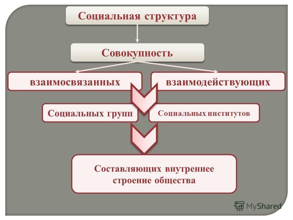 Социальная структура Совокупность взаимосвязанныхвзаимодействующих Социальных групп Социальных институтов Составляющих внутреннее строение общества
