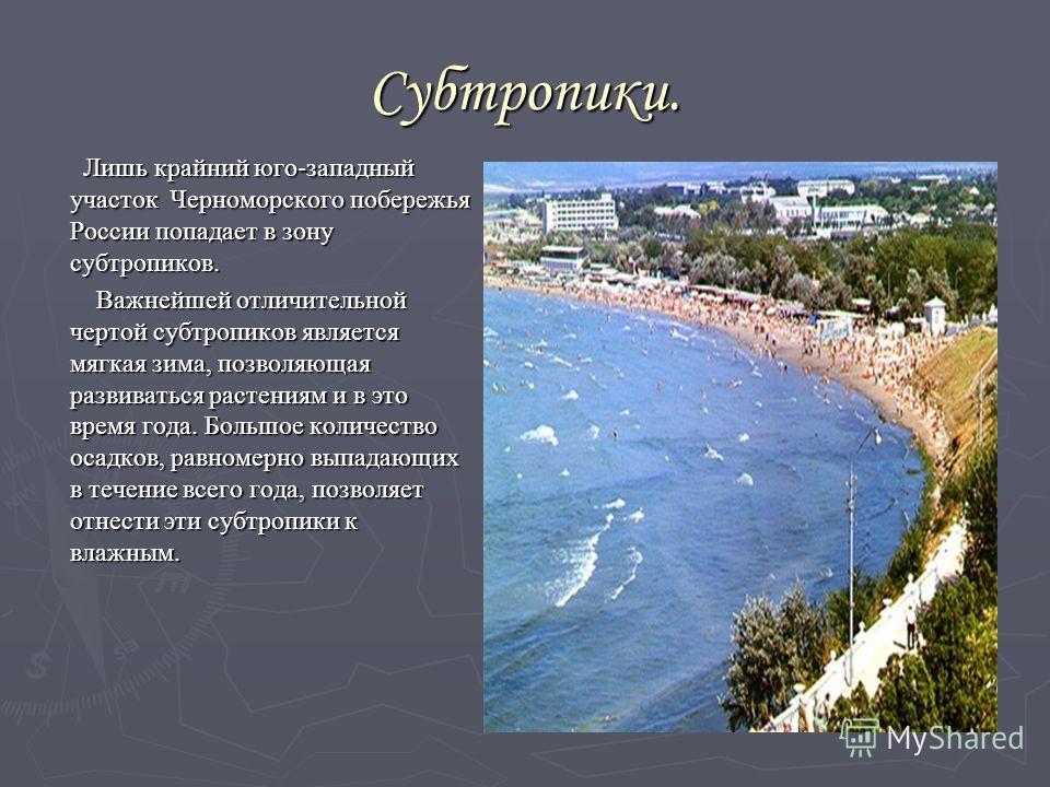 Субтропики. Лишь крайний юго-западный участок Черноморского побережья России попадает в зону субтропиков. Лишь крайний юго-западный участок Черноморского побережья России попадает в зону субтропиков. Важнейшей отличительной чертой субтропиков являетс