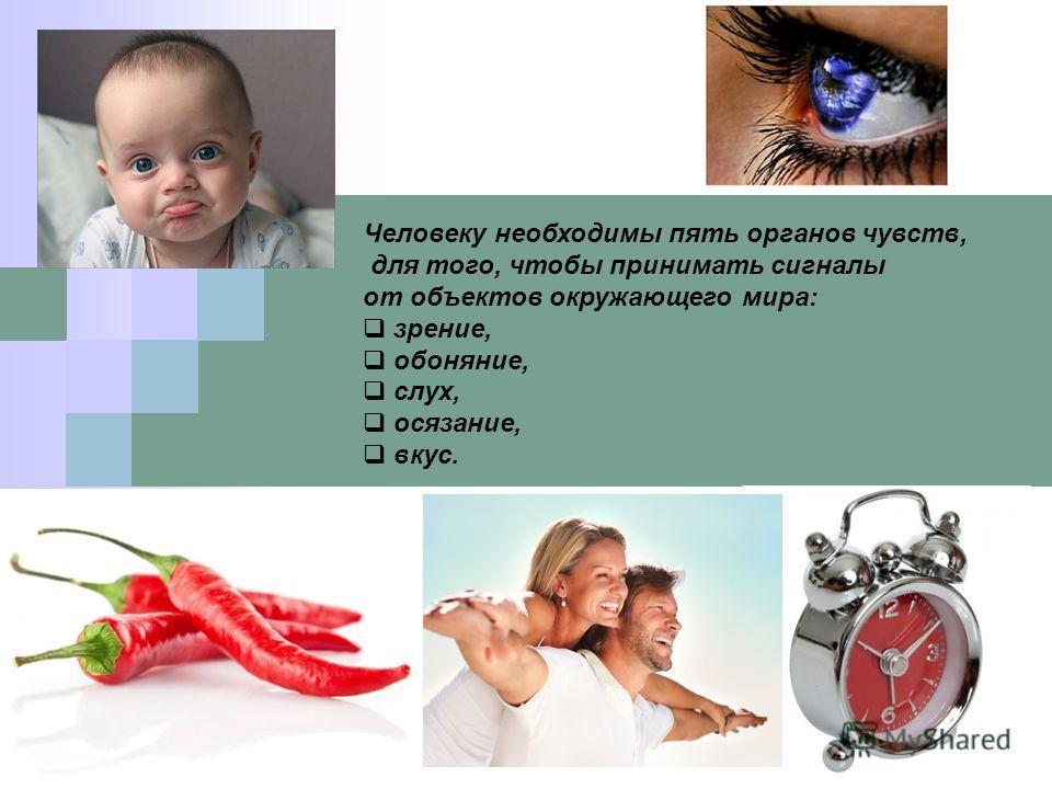 Человеку необходимы пять органов чувств, для того, чтобы принимать сигналы от объектов окружающего мира: зрение, обоняние, слух, осязание, вкус.