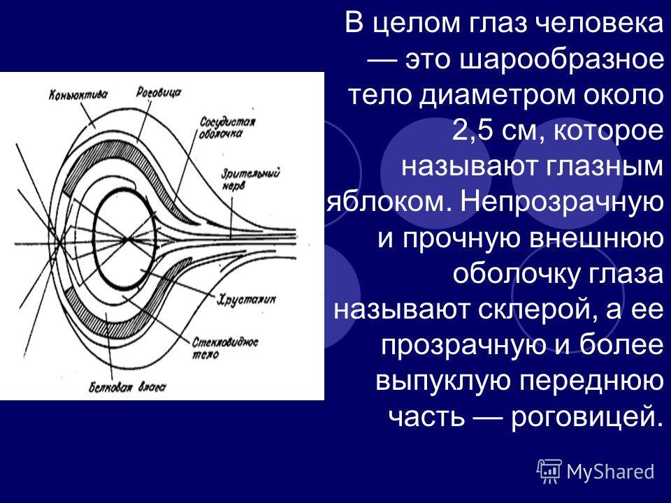 В целом глаз человека это шарообразное тело диаметром около 2,5 см, которое называют глазным яблоком. Непрозрачную и прочную внешнюю оболочку глаза называют склерой, а ее прозрачную и более выпуклую переднюю часть роговицей.