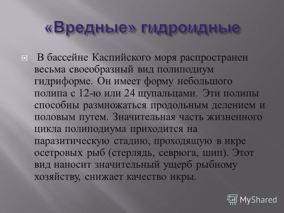 В бассейне Каспийского моря распространен весьма своеобразный вид полиподиум гидриформе. Он имеет форму небольшого полипа с 12- ю или 24 щупальцами. Эти полипы способны размножаться продольным делением и половым путем. Значительная часть жизненного ц