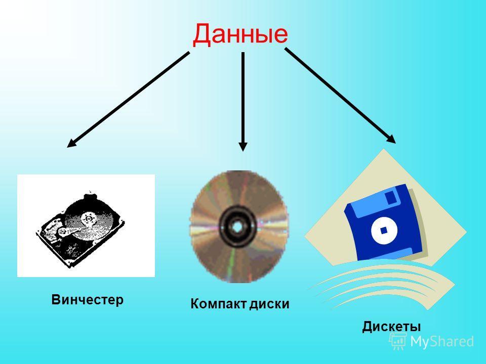 Данные Компакт диски Дискеты Винчестер