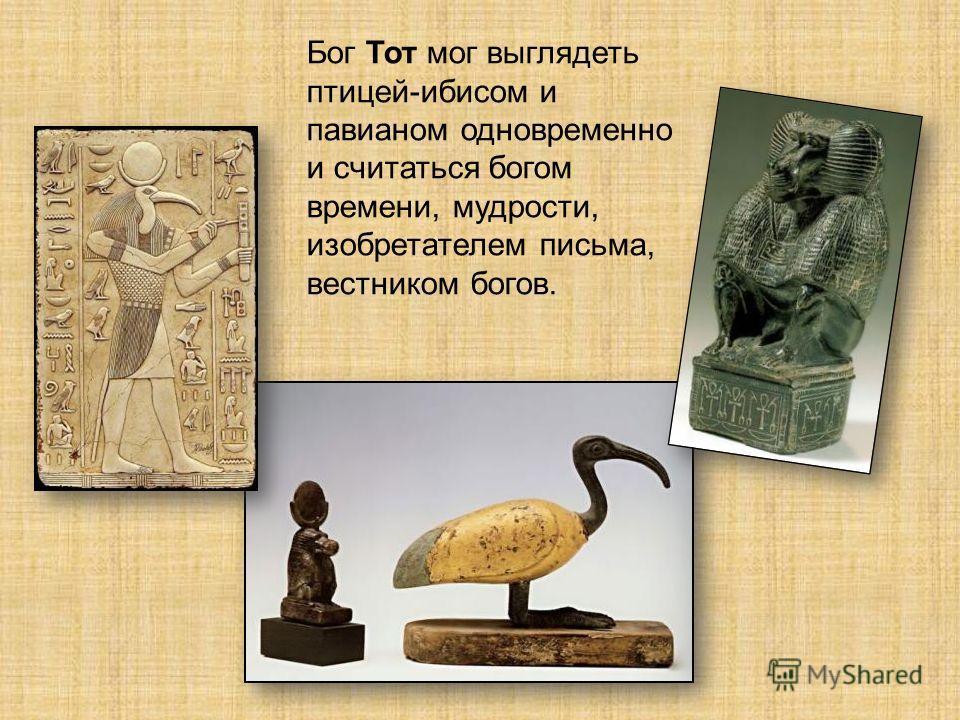 Бог Тот мог выглядеть птицей-ибисом и павианом одновременно и считаться богом времени, мудрости, изобретателем письма, вестником богов.