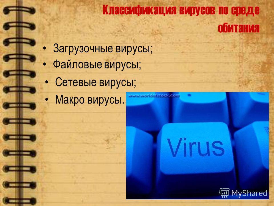 Классификация вирусов по среде обитания Сетевые вирусы; Макро вирусы. Загрузочные вирусы; Файловые вирусы;