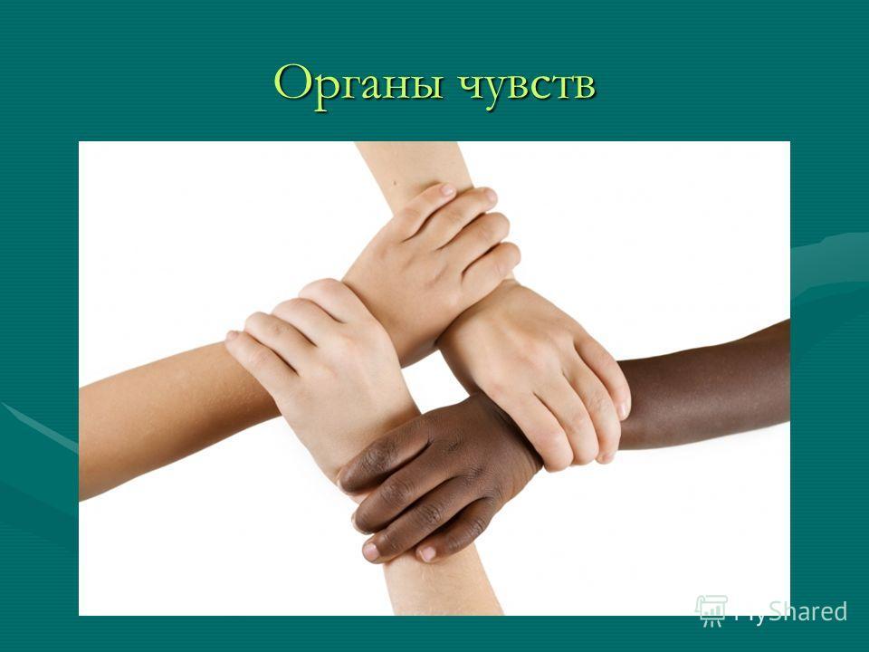 В.г.жданов как восстановить зрение