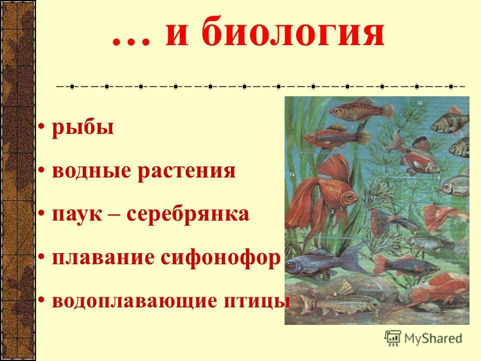 … и биология рыбы водные растения паук – серебрянка плавание сифонофор водоплавающие птицы