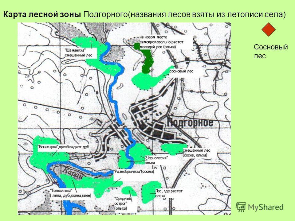 Карта лесной зоны Подгорного(названия лесов взяты из летописи села) + Сосновый лес