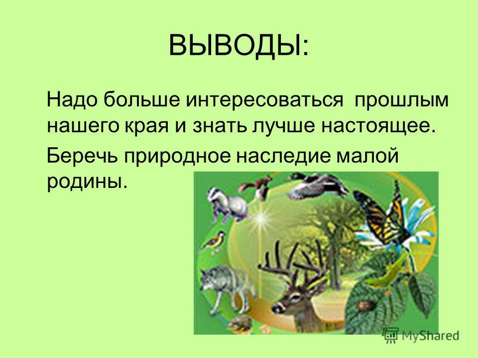 ВЫВОДЫ: Надо больше интересоваться прошлым нашего края и знать лучше настоящее. Беречь природное наследие малой родины.