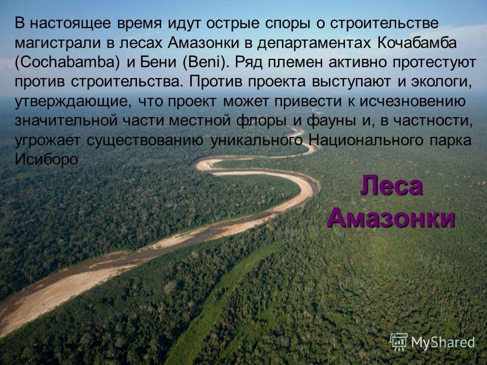 Леса Амазонки В настоящее время идут острые споры о строительстве магистрали в лесах Амазонки в департаментах Кочабамба (Cochabamba) и Бени (Beni). Ряд племен активно протестуют против строительства. Против проекта выступают и экологи, утверждающие,
