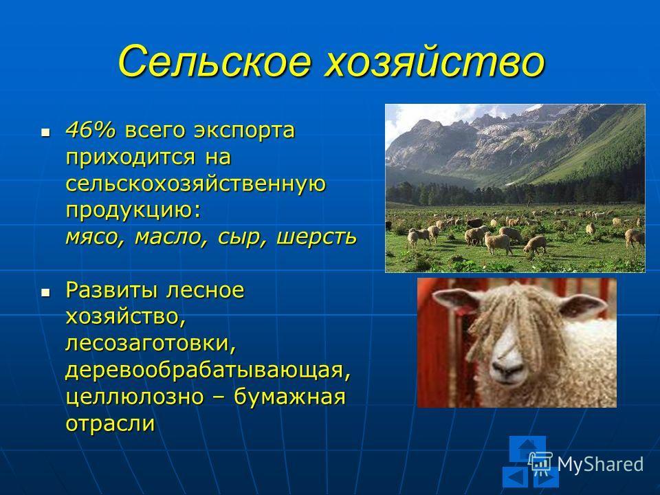 Презентация на тему Новая Зеландия Курсовая работа Учителя  9 Сельское хозяйство