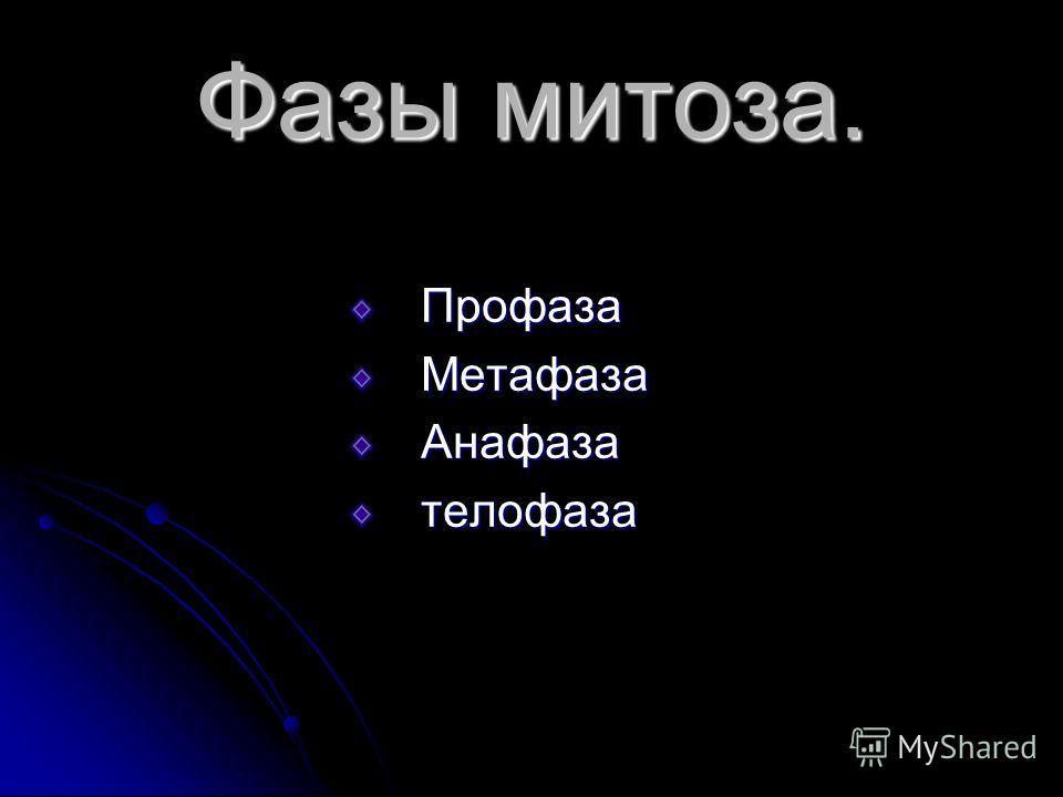 Фазы митоза. ПрофазаМетафазаАнафазателофаза