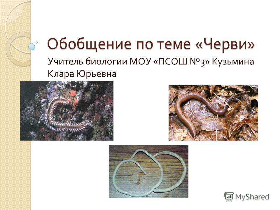 Обобщение по теме « Черви » Учитель биологии МОУ « ПСОШ 3» Кузьмина Клара Юрьевна
