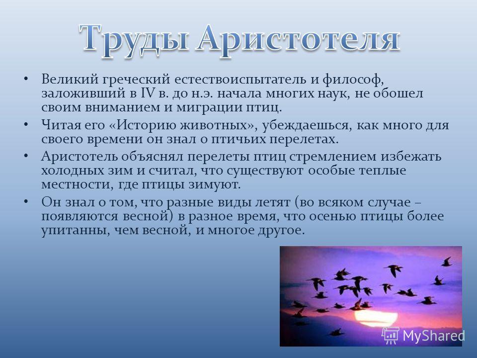 Великий греческий естествоиспытатель и философ, заложивший в IV в. до н.э. начала многих наук, не обошел своим вниманием и миграции птиц. Читая его «Историю животных», убеждаешься, как много для своего времени он знал о птичьих перелетах. Аристотель