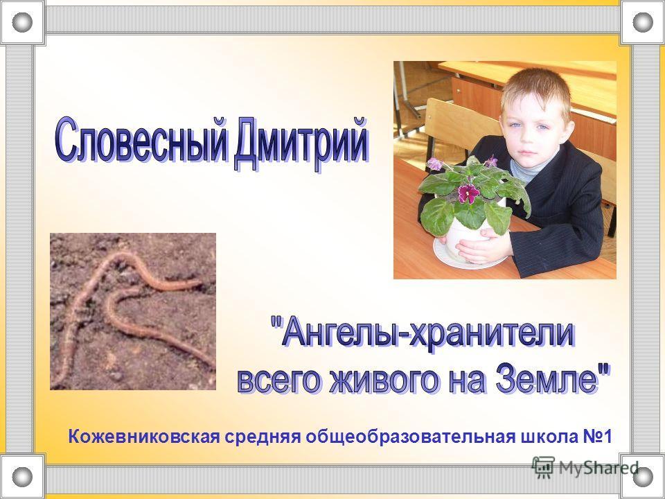 Кожевниковская средняя общеобразовательная школа 1
