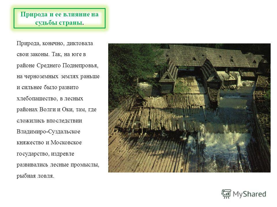 Природа, конечно, диктовала свои законы. Так, на юге в районе Среднего Поднепровья, на черноземных землях раньше и сильнее было развито хлебопашество, в лесных районах Волги и Оки, там, где сложились впоследствии Владимиро-Суздальское княжество и Мос
