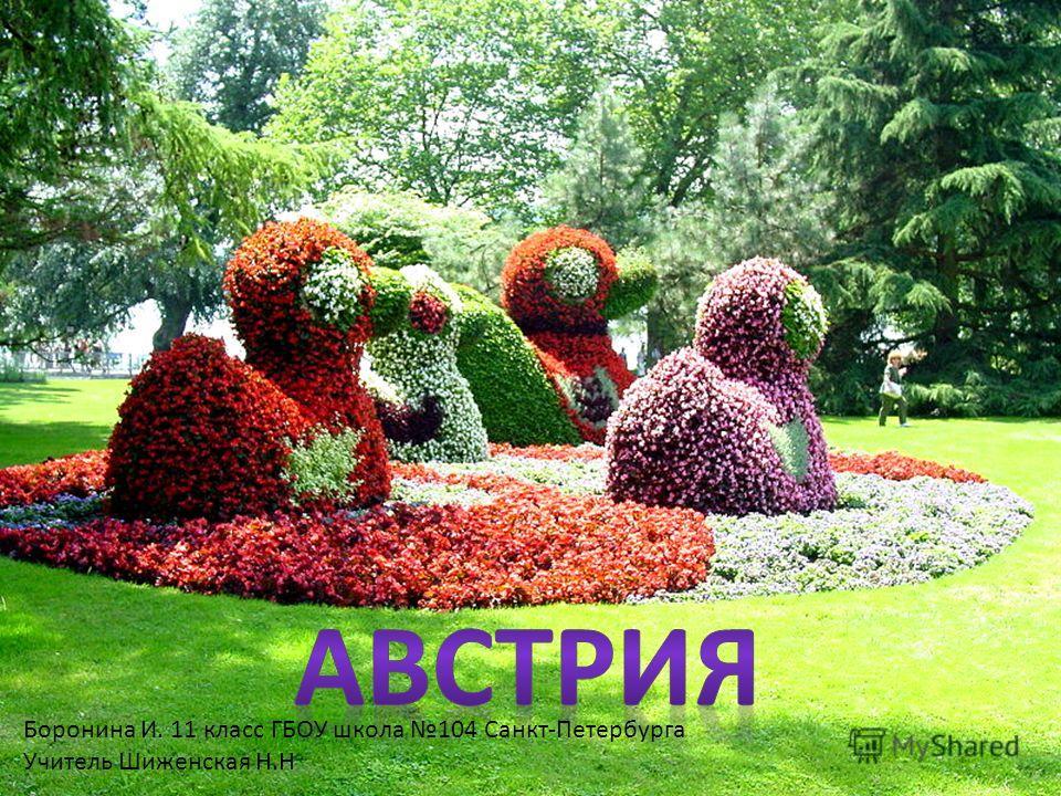 Боронина И. 11 класс ГБОУ школа 104 Санкт-Петербурга Учитель Шиженская Н.Н