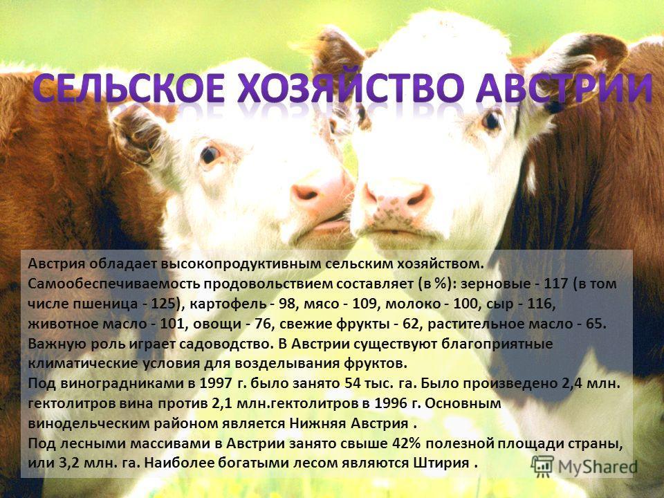 Австрия обладает высокопродуктивным сельским хозяйством. Самообеспечиваемость продовольствием составляет (в %): зерновые - 117 (в том числе пшеница - 125), картофель - 98, мясо - 109, молоко - 100, сыр - 116, животное масло - 101, овощи - 76, свежие
