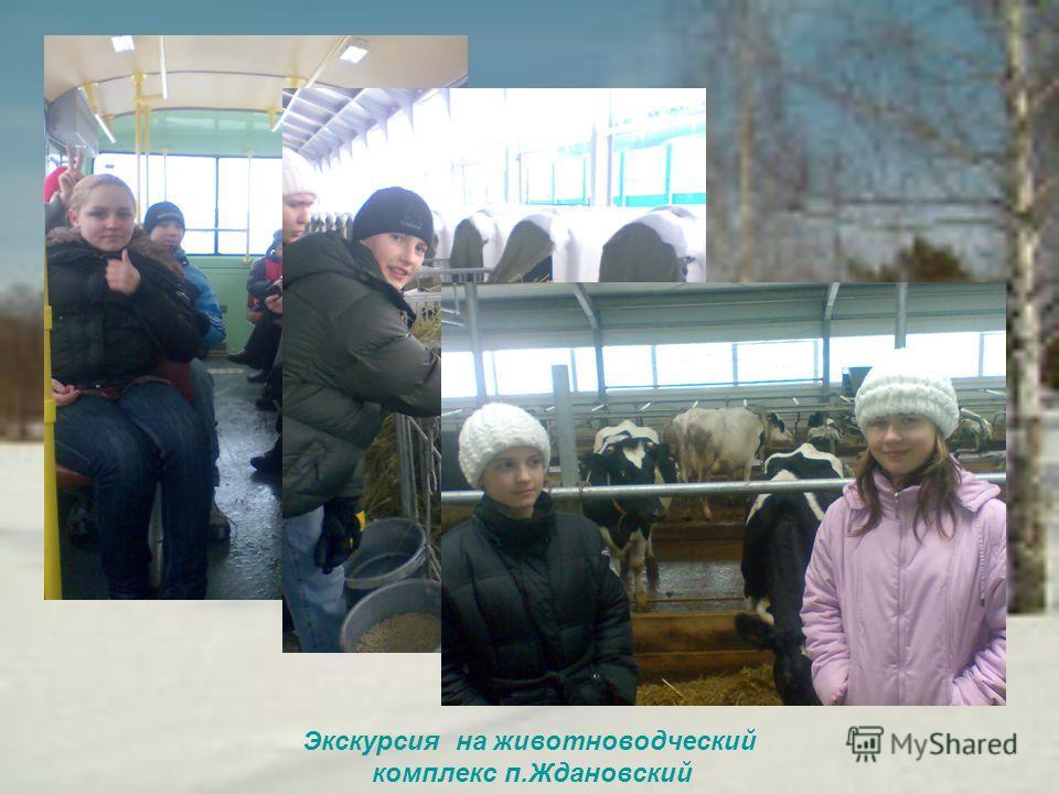Экскурсия на животноводческий комплекс п.Ждановский
