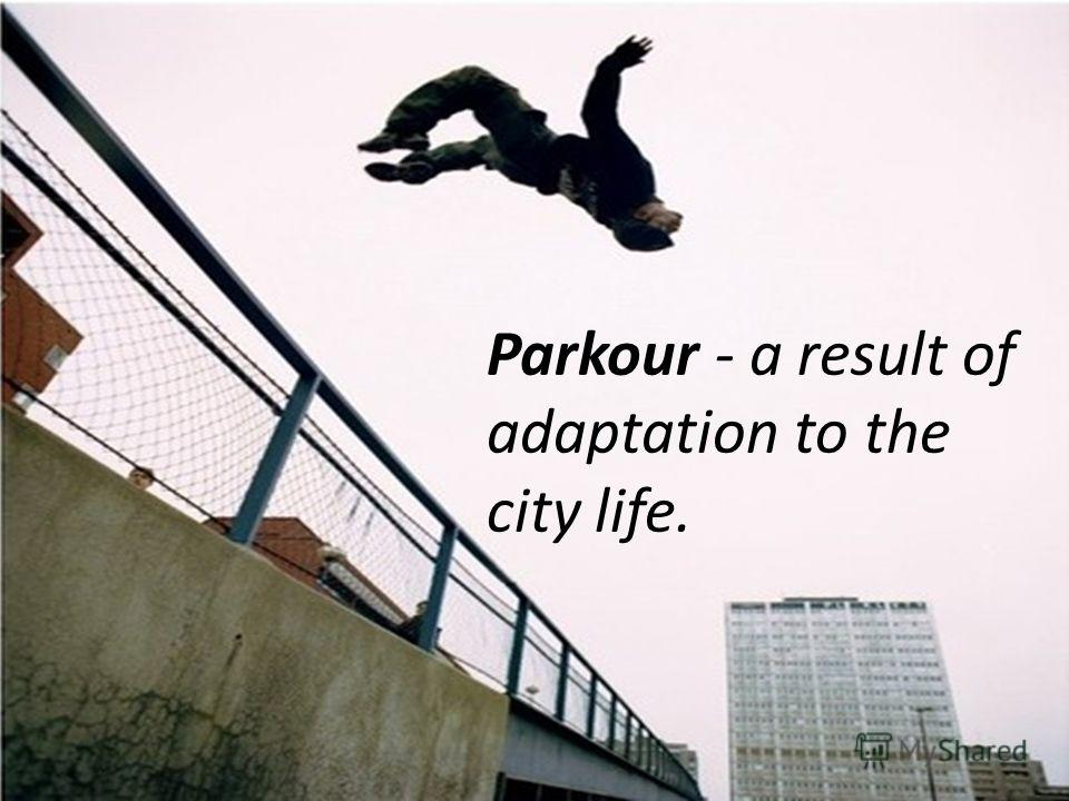 Parkour - a result of adaptation to the city life.