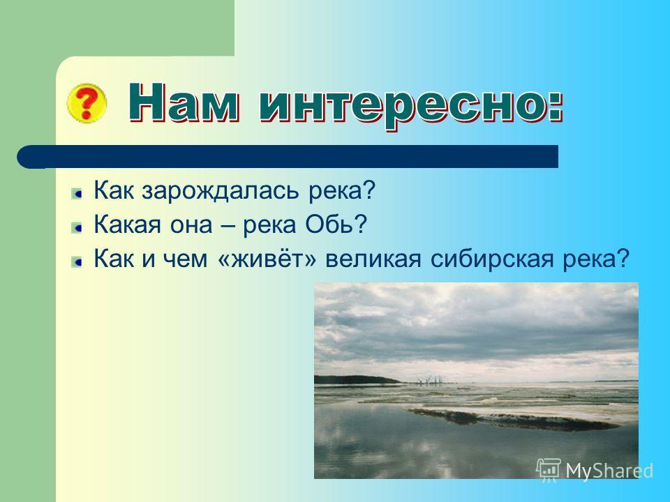 Как зарождалась река? Какая она – река Обь? Как и чем «живёт» великая сибирская река?
