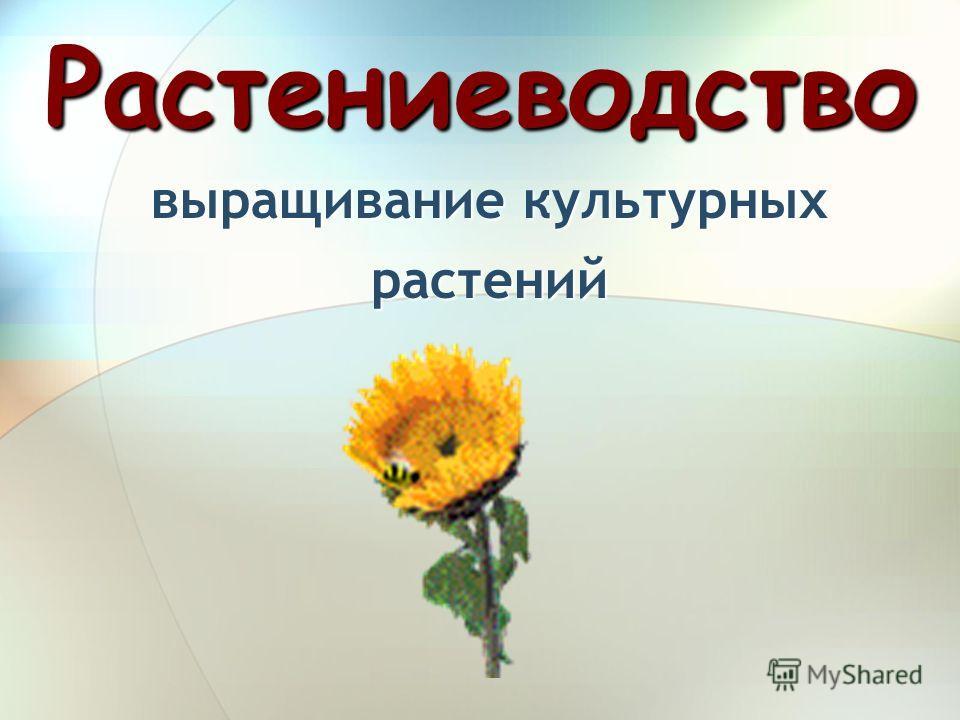 Растениеводство выращивание культурных растений