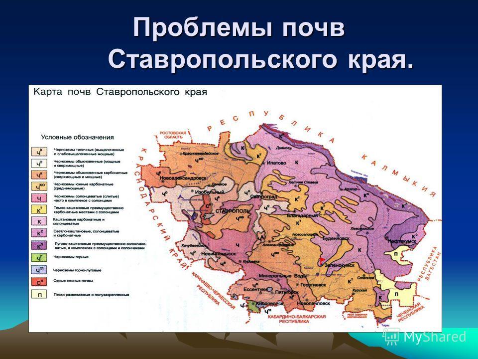 знакомства без регистрации ставропольский край невинномысск