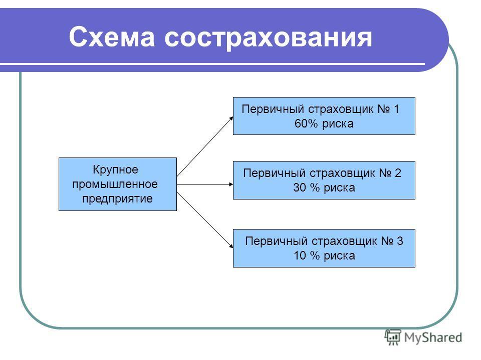 Схема сострахования Крупное промышленное предприятие Первичный страховщик 1 60% риска Первичный страховщик 2 30 % риска Первичный страховщик 3 10 % риска