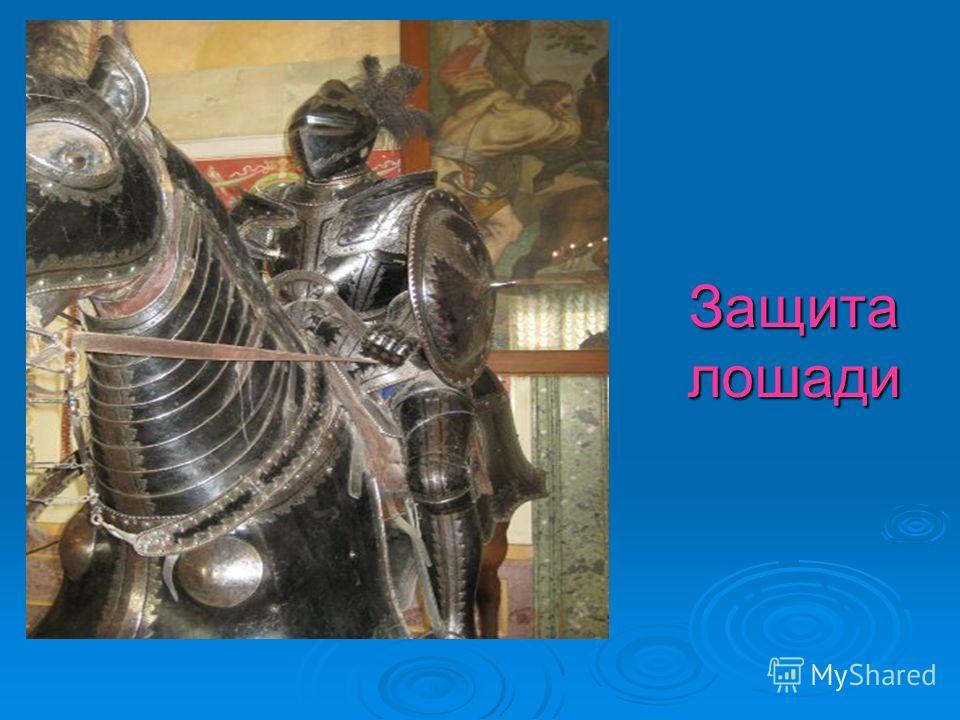 Защита лошади