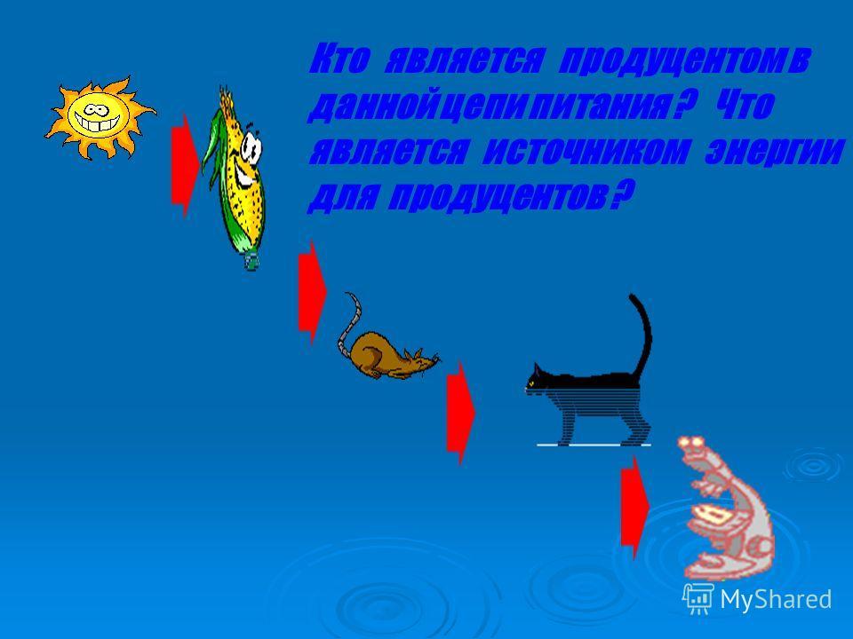 какие организмы являются паразитами 1 росянка