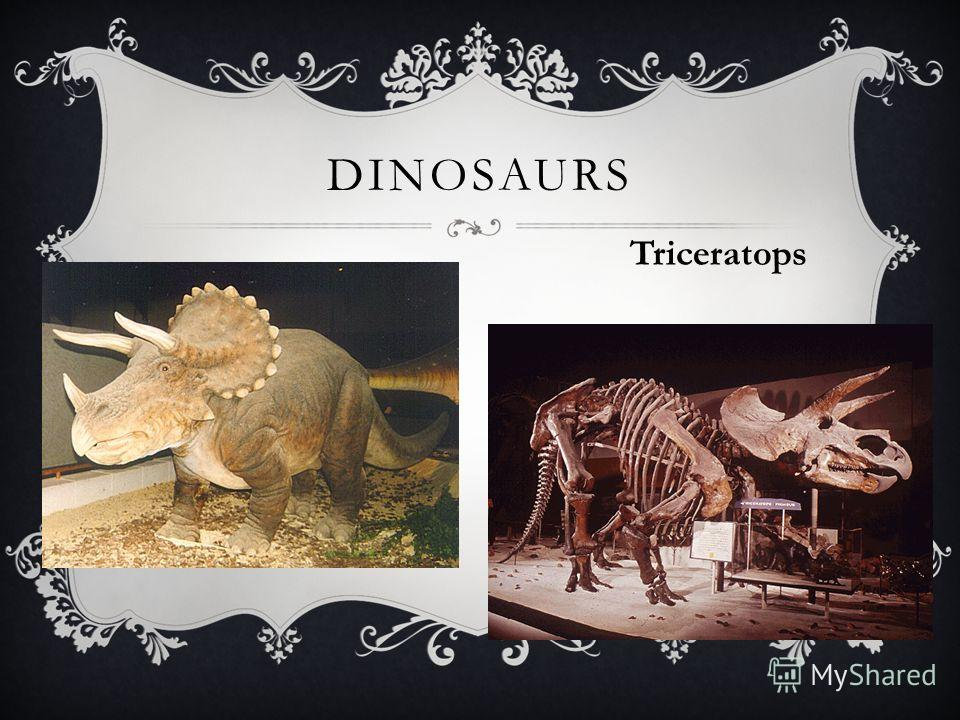 DINOSAURS Triceratops