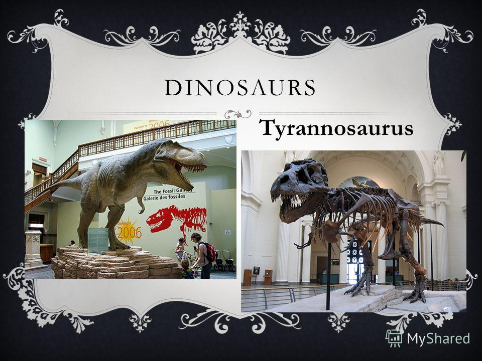 DINOSAURS Tyrannosaurus