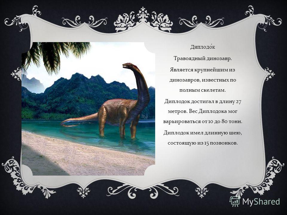 Диплодок Травоядный динозавр. Является крупнейшим из динозавров, известных по полным скелетам. Диплодок достигал в длину 27 метров. Вес Диплодока мог варьироваться от 10 до 80 тонн. Диплодок имел длинную шею, состоящую из 15 позвонков.