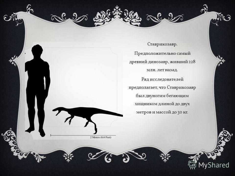 Ставрикозавр. Предположительно самый древний динозавр, живший 228 млн. лет назад. Ряд исследователей предполагает, что Ставрикозавр был двуногим бегающим хищником длиной до двух метров и массой до 30 кг.