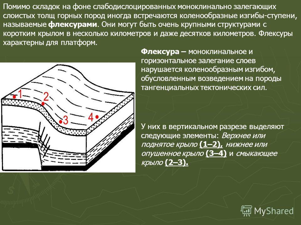 Помимо складок на фоне слабодислоцированных моноклинально залегающих слоистых толщ горных пород иногда встречаются коленообразные изгибы-ступени, называемые флексурами. Они могут быть очень крупными структурами с коротким крылом в несколько километро