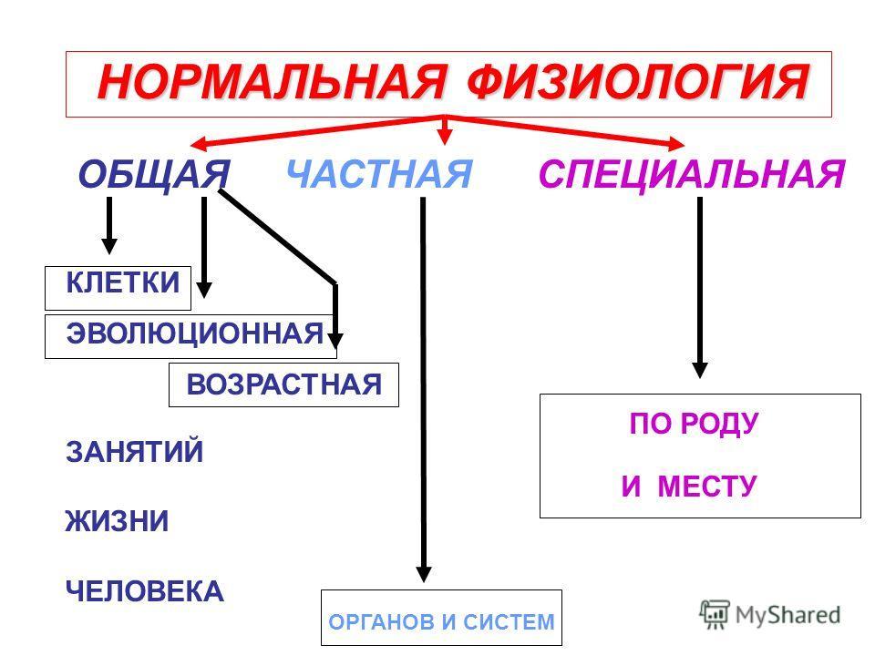 ФИЗИОЛОГИЯ РАСТЕНИЙ ЖИВОТНЫХ ЧЕЛОВЕКА НОРМАЛЬНАЯ ПАТОЛОГИЧЕСКАЯ КЛИНИЧЕСКАЯ