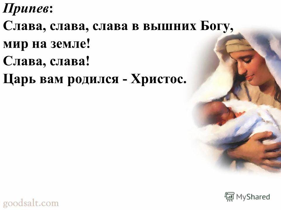Припев: Слава, слава, слава в вышних Богу, мир на земле! Слава, слава! Царь вам родился - Христос.