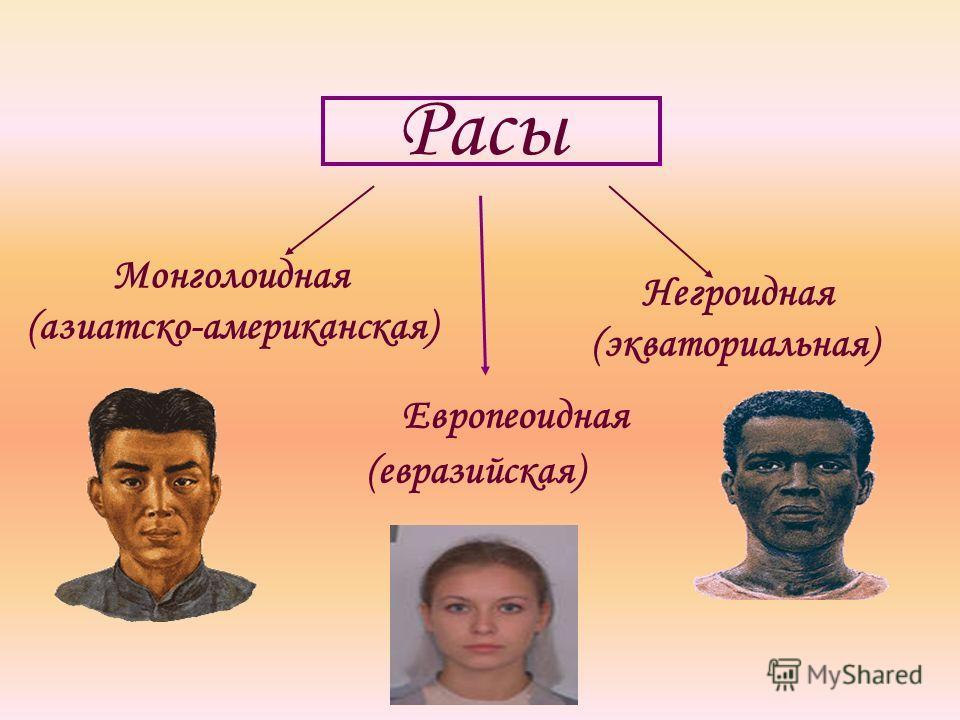 Расы Монголоидная (азиатско-американская) Европеоидная (евразийская) Негроидная (экваториальная)