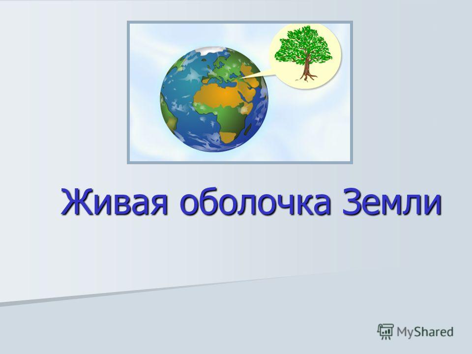Живая оболочка Земли