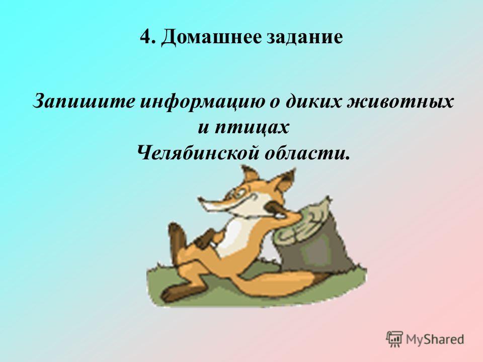 4. Домашнее задание Запишите информацию о диких животных и птицах Челябинской области.