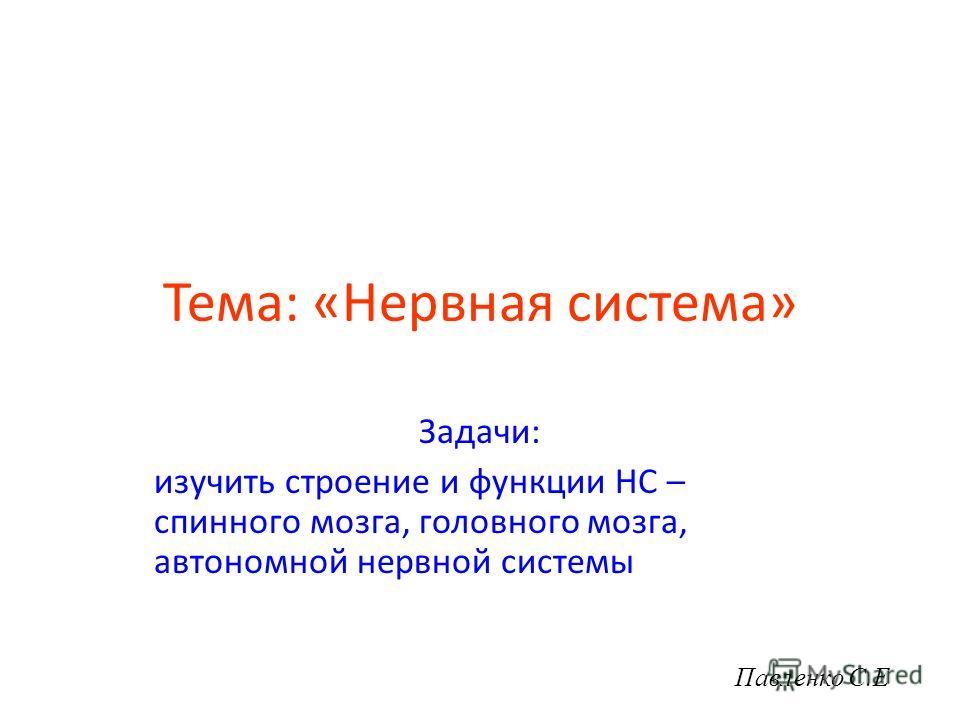 Тема: «Нервная система» Задачи: изучить строение и функции НС – спинного мозга, головного мозга, автономной нервной системы Павленко С.Е