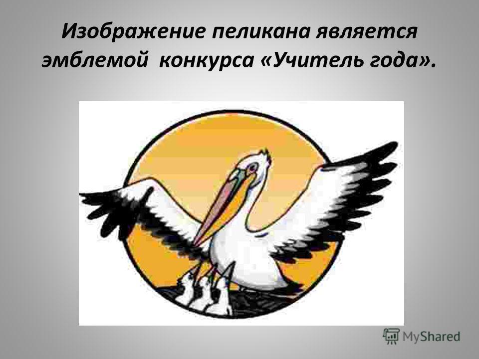 Изображение пеликана является эмблемой конкурса «Учитель года».