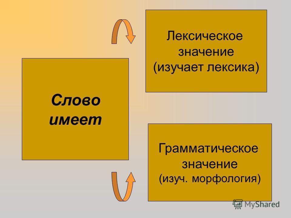 Лексическое значение (изучает лексика) Грамматическое значение (изуч. морфология) Слово имеет