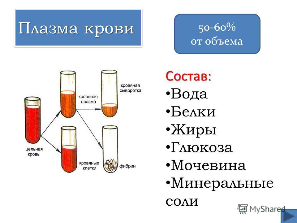 Плазма крови Состав: Вода Белки Жиры Глюкоза Мочевина Минеральные соли 50-60% от объема