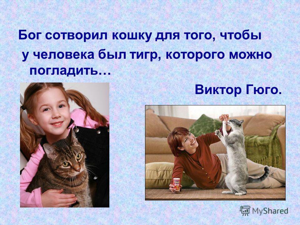 Бог сотворил кошку для того, чтобы у человека был тигр, которого можно погладить… Виктор Гюго.