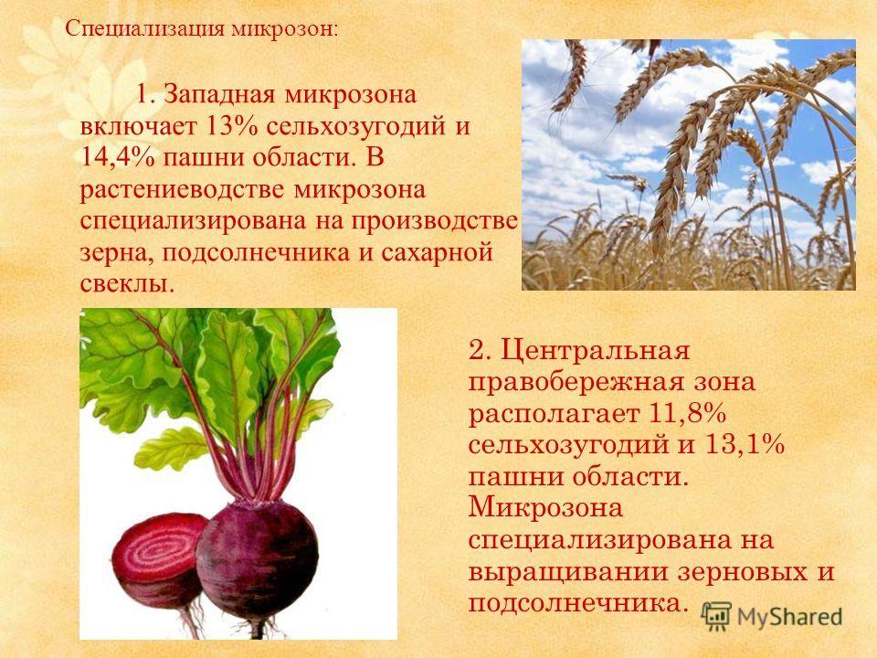 Специализация микрозон: 1. Западная микрозона включает 13% сельхозугодий и 14,4% пашни области. В растениеводстве микрозона специализирована на производстве зерна, подсолнечника и сахарной свеклы. 2. Центральная правобережная зона располагает 11,8% с