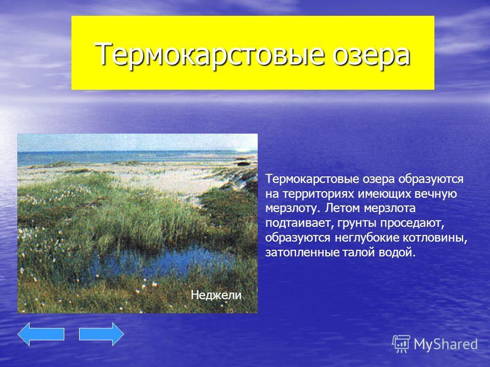 Термокарстовые озера Термокарстовые озера образуются на территориях имеющих вечную мерзлоту. Летом мерзлота подтаивает, грунты проседают, образуются неглубокие котловины, затопленные талой водой. Неджели