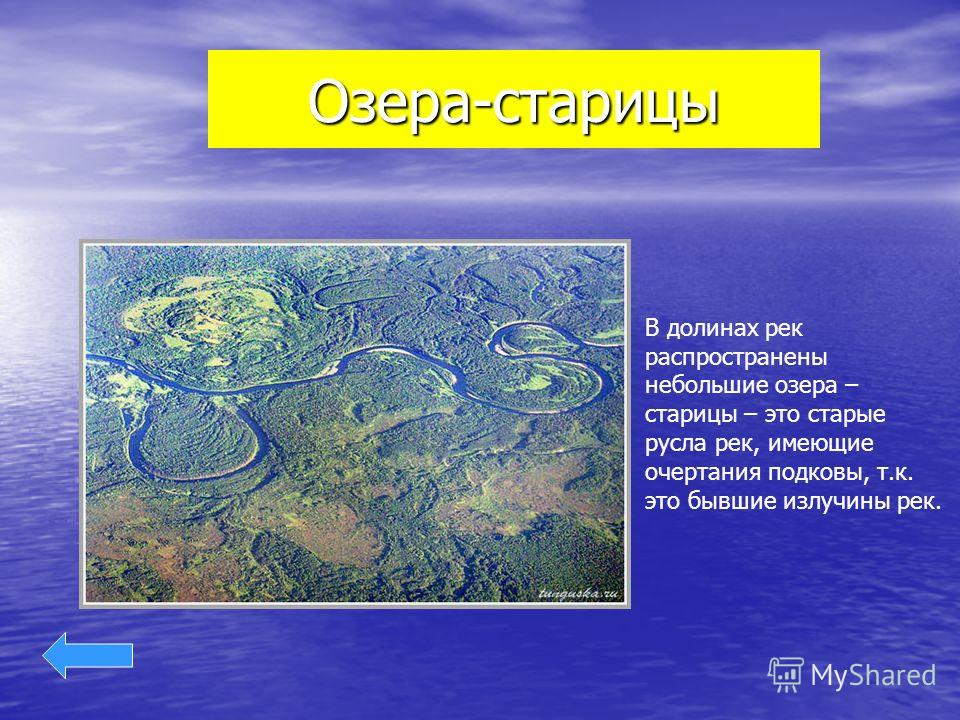 Озера-старицы В долинах рек распространены небольшие озера – старицы – это старые русла рек, имеющие очертания подковы, т.к. это бывшие излучины рек.