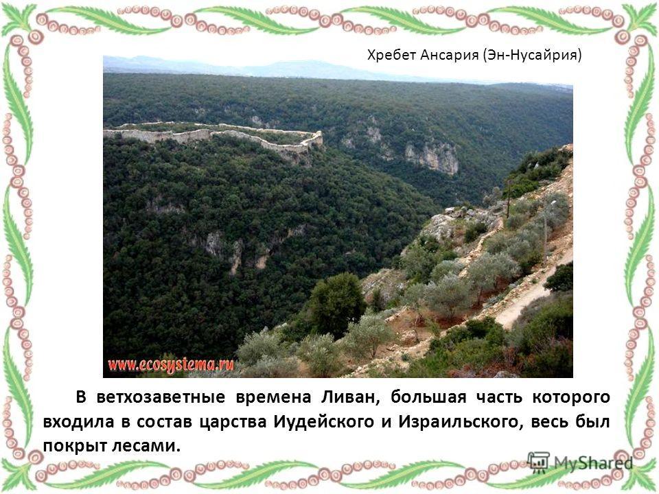 В ветхозаветные времена Ливан, большая часть которого входила в состав царства Иудейского и Израильского, весь был покрыт лесами. Хребет Ансария (Эн-Нусайрия)